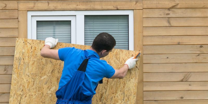a contractor installing ACX plywood into a home