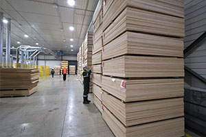 Warehousing and accounting of plywood on an industrial scale