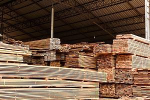 Proper storage of wood to prevent warping