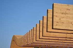 rows of southern yellow pine plywood