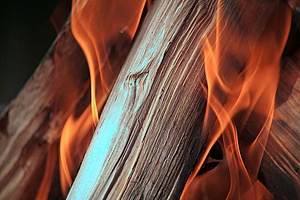 a close up view of a combustible type of wood that is not fire retardant