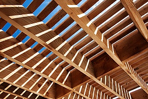 lumber used for roof construction
