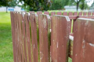 Copper azole treated wooden fence
