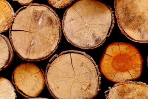 lumber stored in lumber yard with a wholesale lumber supplier