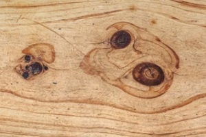 knots in lumber